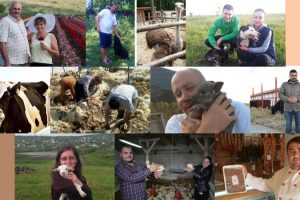 10 români care s-au întors din străinătate să facă afaceri de succes în agricultură